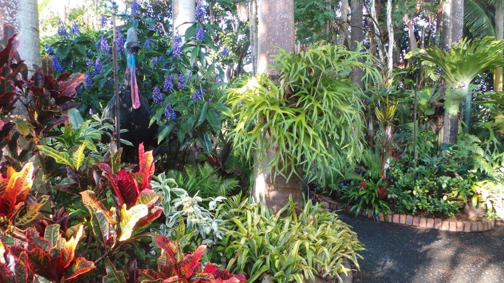 Rainforest wedding at Joncia Gardens, Brisbane